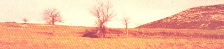 Ο χώρος της μάχης. Στο βάθος ασπρίζουν τ' απομεινάρια από τα πολυβολεία των Γερμανών. Δεξιά το βουνό «Κατσίκα».