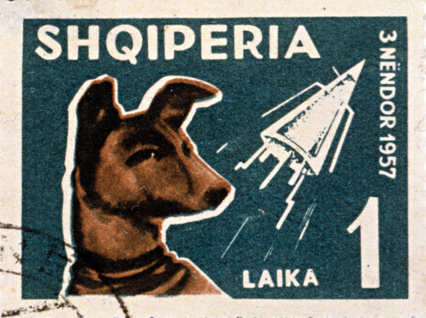 1957: An Albanian postage stamp depicting Laika, the dog sent into space on the Russian space satellite Sputnik. Shqiperia is the local name for Albania. (Photo by Blank Archives/Getty Images)