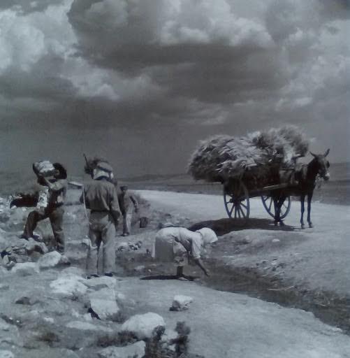 Αγρότες σε πηγή, Αττική, 1950 -55