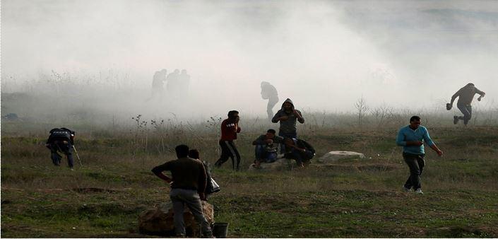 palestini14