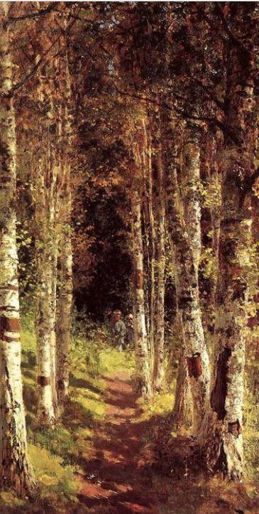 Μπερεζόβαγια αλέγια-δεντροστοιχία με σημύδες, 1880