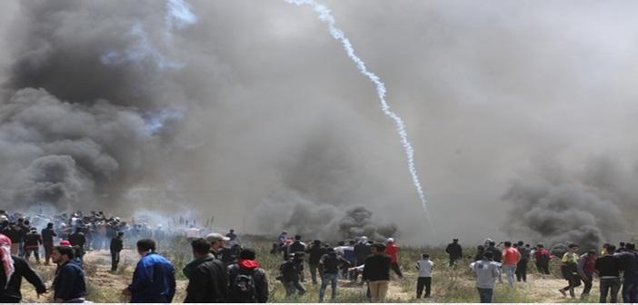 palestini13