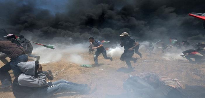 palestini400