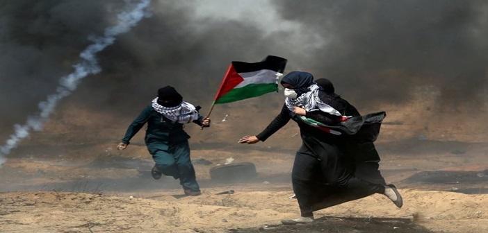 palestini401