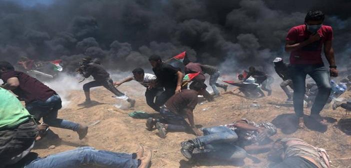 palestini22