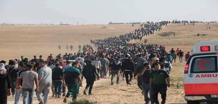 palestine6