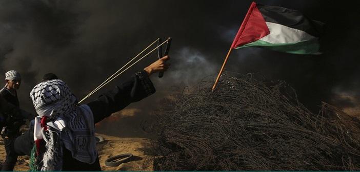 palestine8