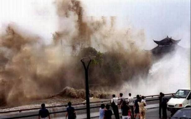 tsunami8