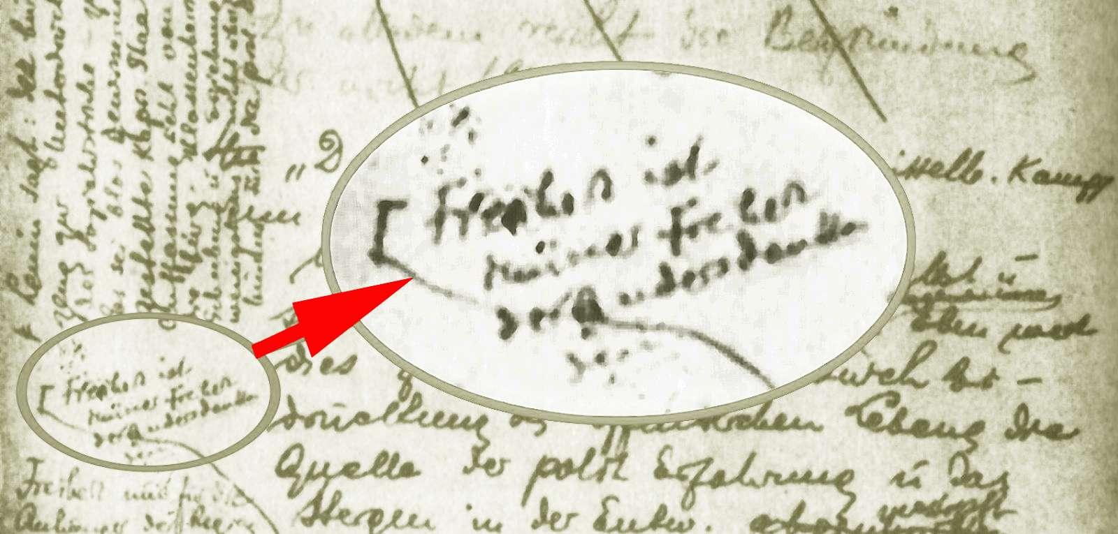 Text Luxemburg Freiheit ist immer Freiheit des anders Denkenden