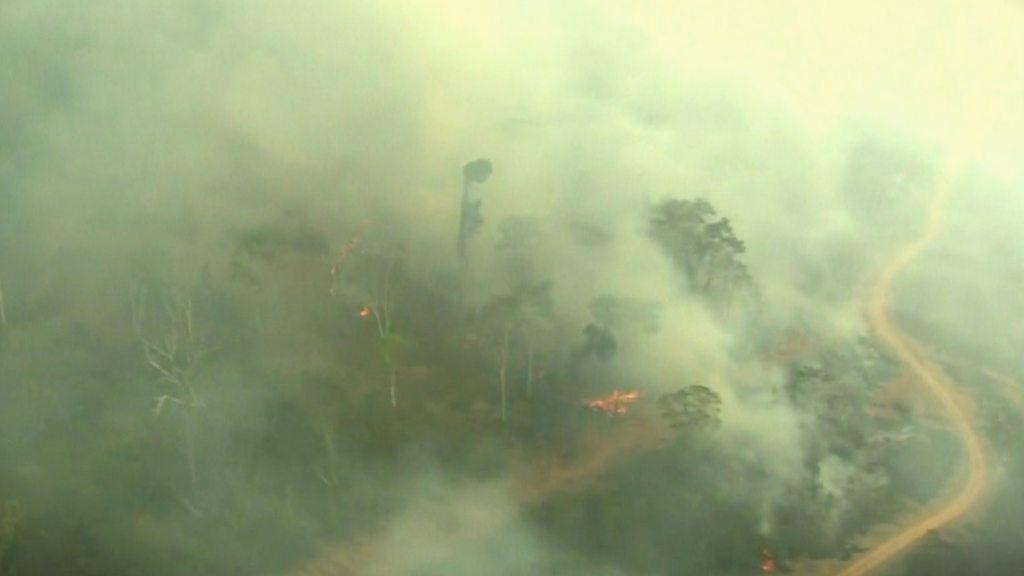 Αμαζόνιος: Αυτά είναι τα ισχυρά καπιταλιστικά συμφέροντα πίσω από το οικολογικό έγκλημα