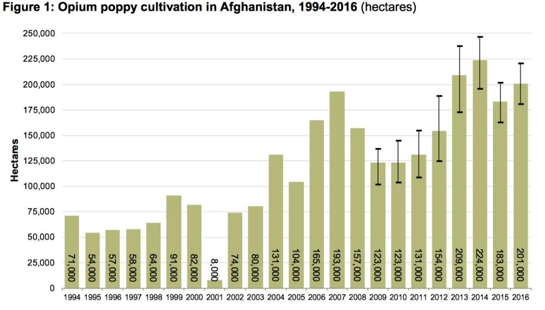 opium afganistan