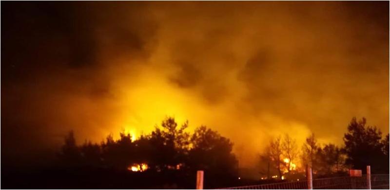 5 Σεπ 19 μεγάλη φωτιά στη Ν. Μάκρη