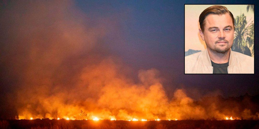 Λεονάρντο Ντι Κάπριο: «να σταματήσουμε να τρώμε κρέας και έτσι θα σταματήσουν και οι πυρκαγιές στον Αμαζόνιο»