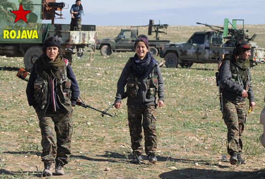 The Lions Of Rojava