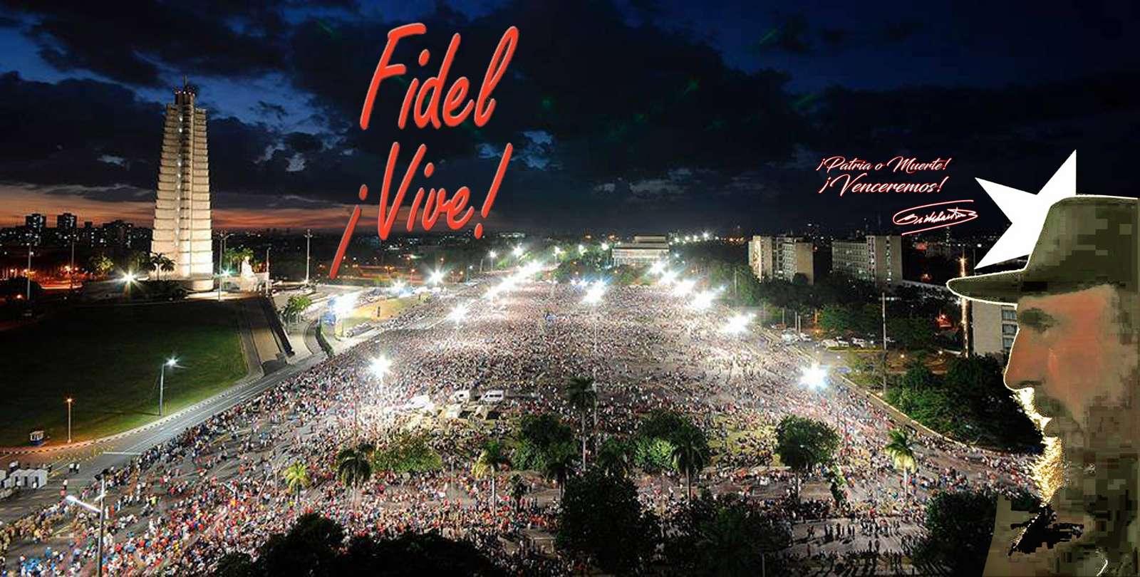 Fidel ¡vive!