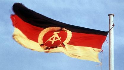 DDR flag