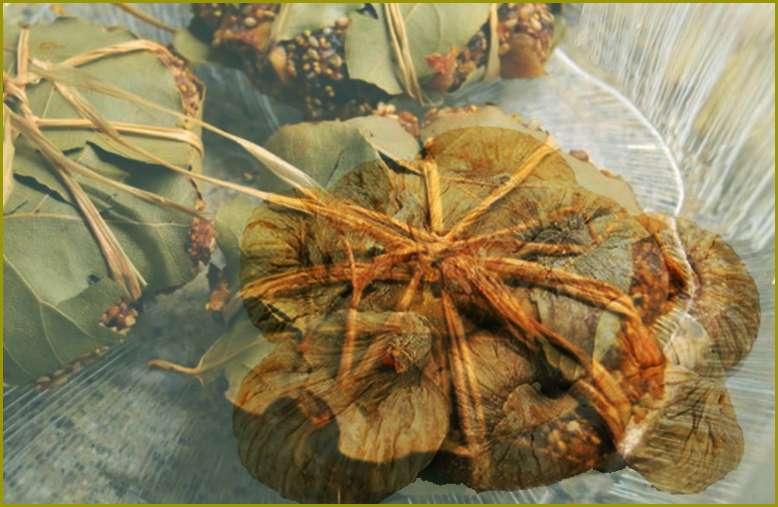 Συκομαΐδες συκοπιταρίδες