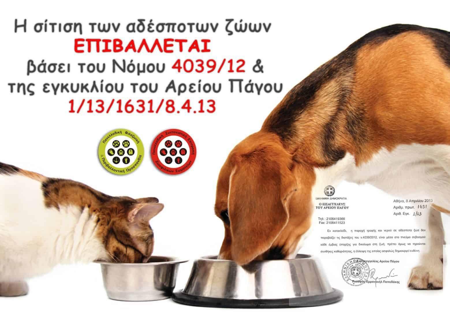 Ποινή έξι μηνών για άνδρα που παρεμπόδιζε το ταΐσμα αδέσποτων ζώων