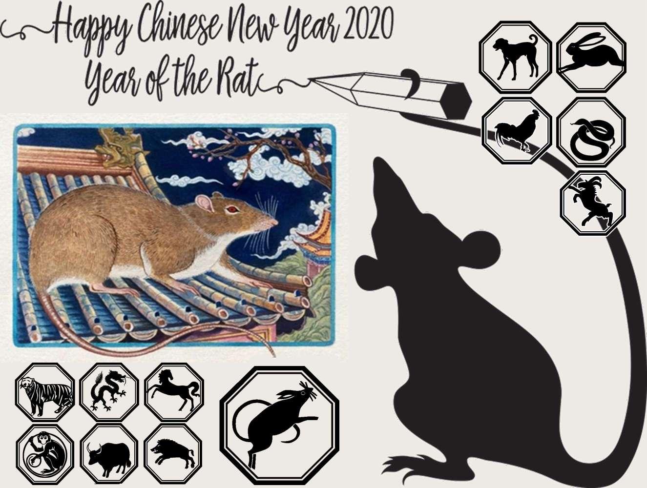 Κίνα στη Χρονιά του Ποντικού Λευκού Αρουραίου