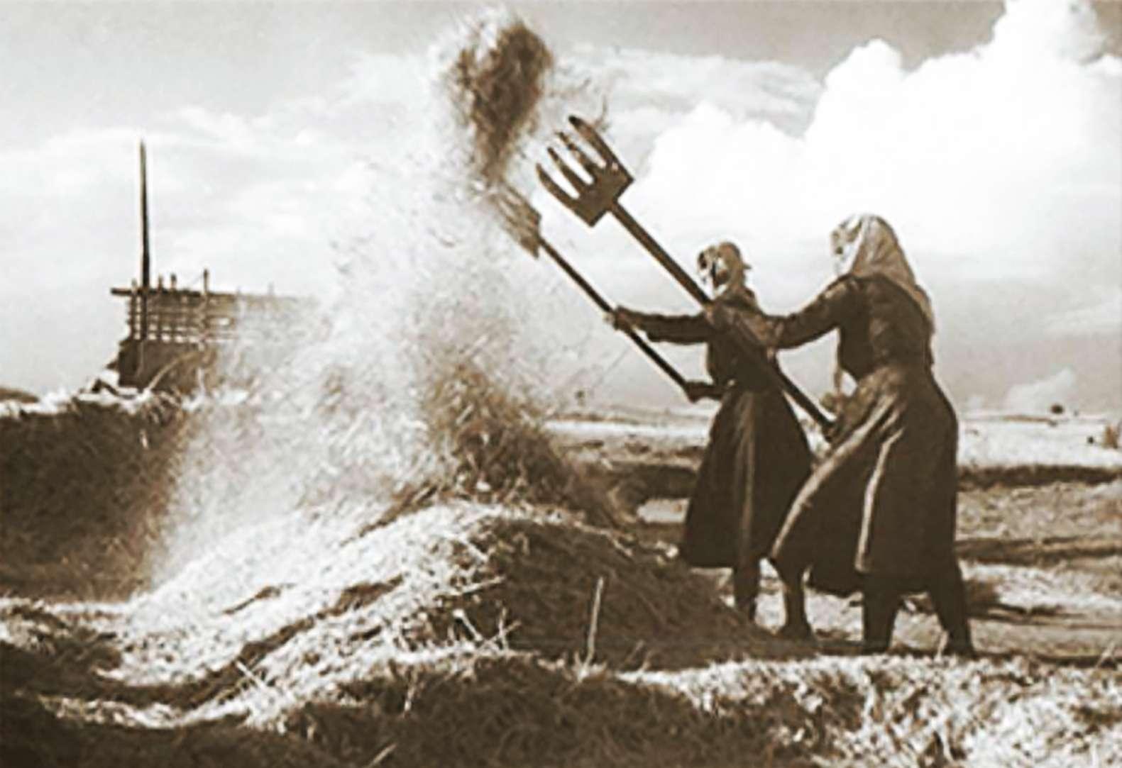 Ο αλωνάρης Ιούλης, Αηλιάτης, Εκατομβαιών και Φουσκομηνάς