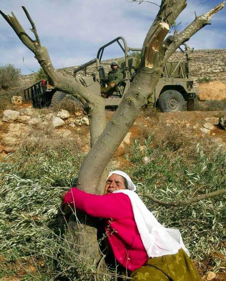 Παλαιστίνη_κατεχόμενα