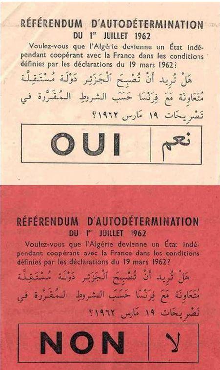 Algerie Oui Non 1 7 1962