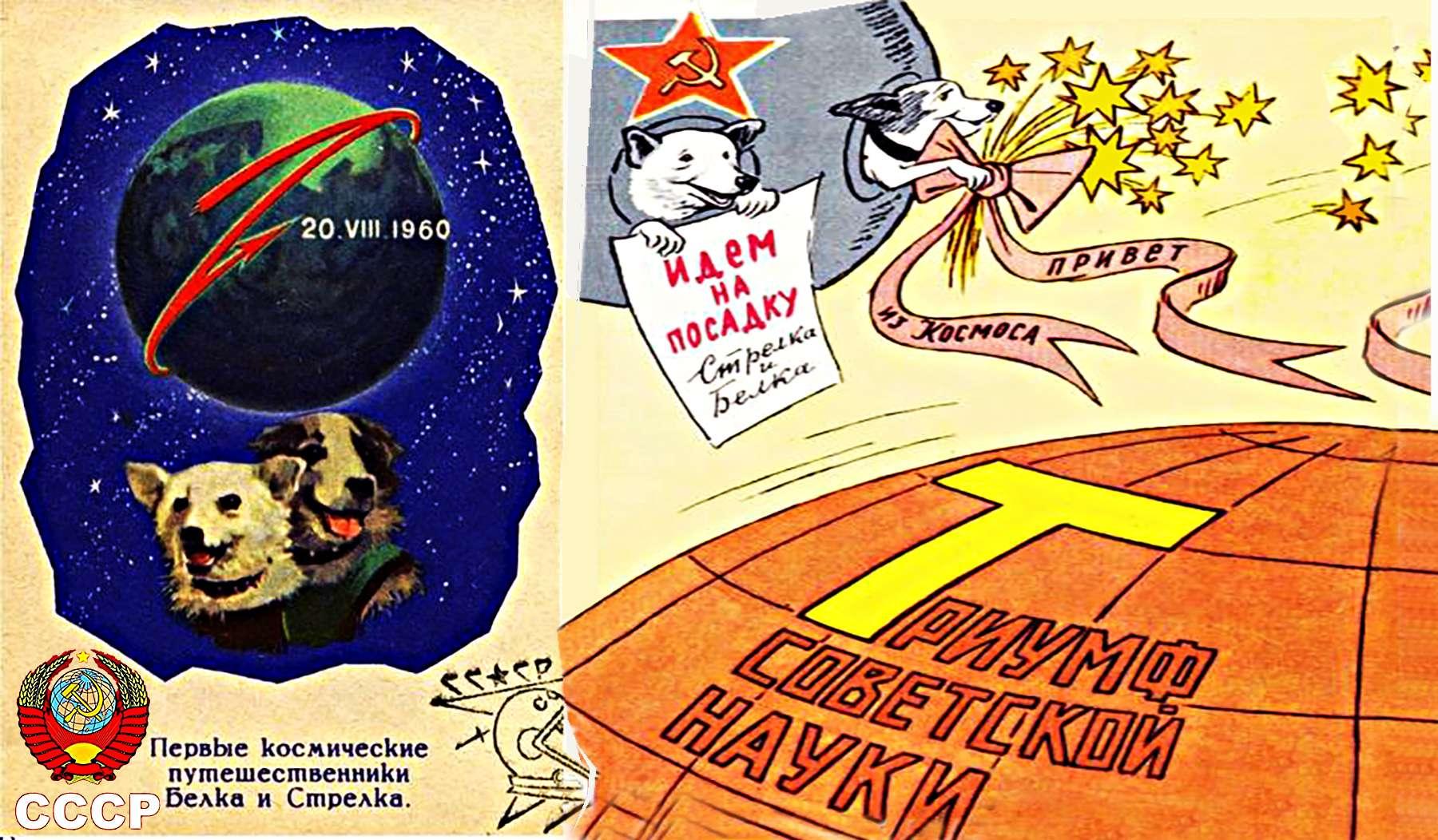 19 Αυγ 1960 19 августа 1960 Белка и Стрелка