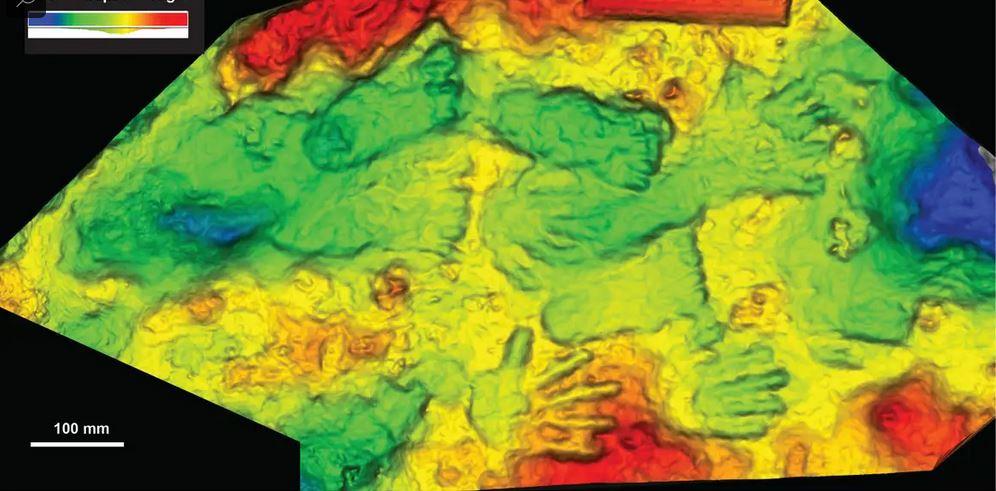 Τέχνη 200.000 ετών στο Θιβέτ 3D scan of the Quesang print panel