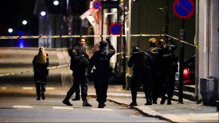 Norway police 1